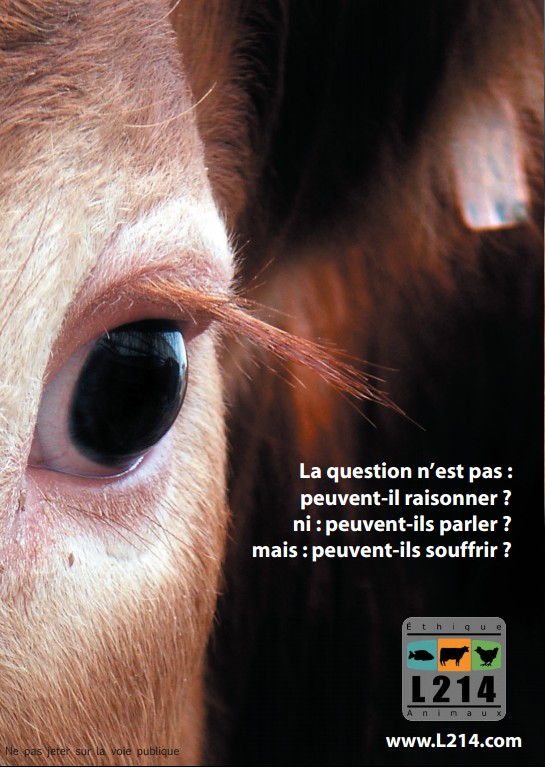 La question n'est pas