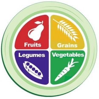 food-plate-vegetarian-food-pyramid-alternative-490x359