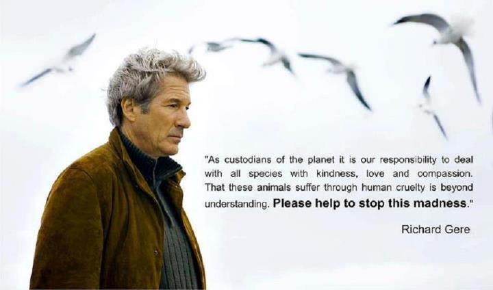 richard_gere_citation