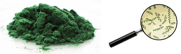 Photo spiruline combinée