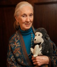Jane Goodall, fondatrice de No Reel Apes