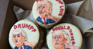 Punch Trump Donut