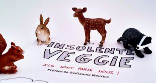 Insolente Veggie, tome 4 : attention, chef d'oeuvre !